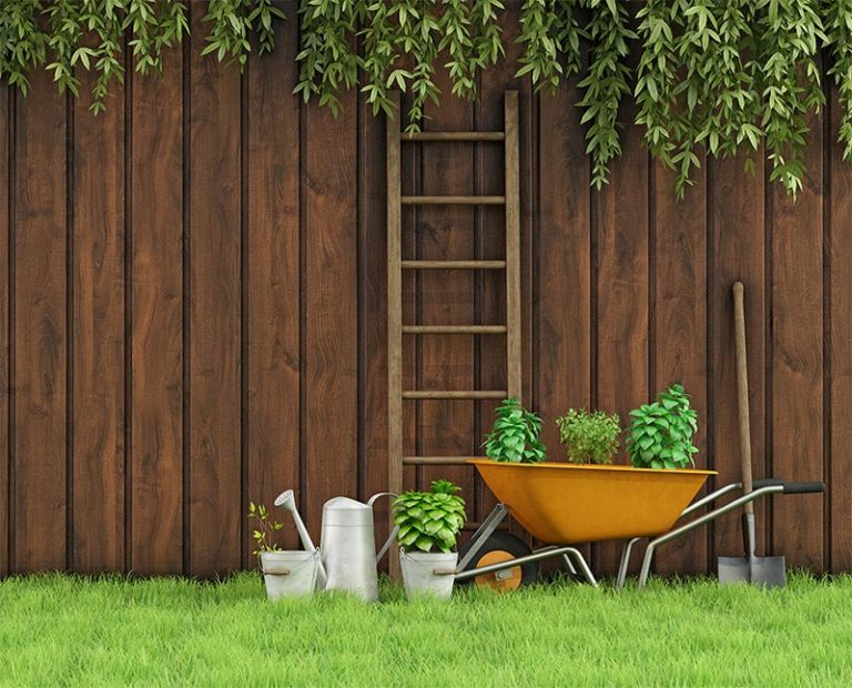 garden maintenance dubai