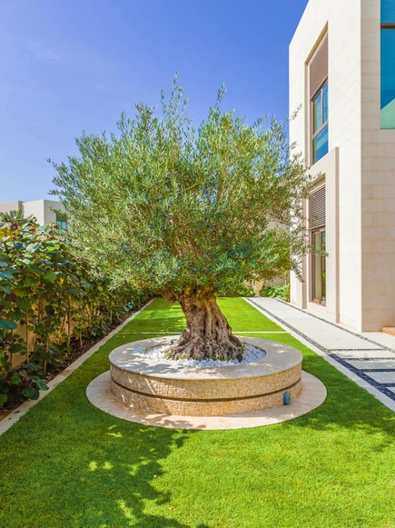Best Garden Design Company In Dubai One Of The Best Landscaping Companies In Dubai,Exterior Decorative Window Window Design For Home Outside In India
